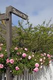 Second Street. Pink roses on a white picket fence beneath street sign Royalty Free Stock Images