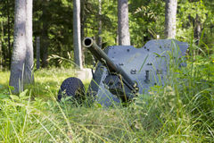 Second world war cannon hiding in grass Royalty Free Stock Image