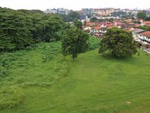 Secondary rainforest in Hougang, Singapore Stock Photos