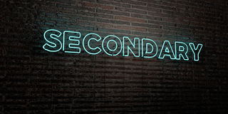 SECONDARY -Realistic Neon Sign on Brick Wall background - 3D rendered royalty free stock image Royalty Free Stock Images