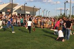 secondo cane annuale Derby In Motion Escape Dog della salciccia immagine stock