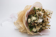Secou flores, fundos belamente crafted, brancos imagem de stock
