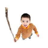 Secouez un bâton à photographie stock