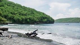 Secret Beach Tree Nusa Penida Bay Slowmotion stock video footage