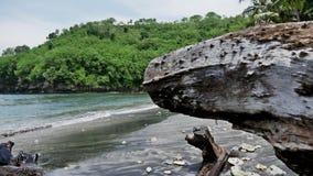 Secret Beach Tree Nusa Penida Bay Slowmotion stock video