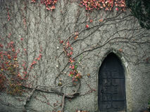 Secret Entrance. Hidden place; old mysterious door Royalty Free Stock Photo