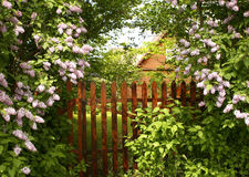 Secret entrance to the garden Stock Photography