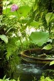 Secret garden stock photos
