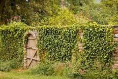 Secret Garden. Gate to a secret garden stock photo
