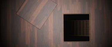 Secret hidden door. Trap door leading to hidden room below the hardwood  floor Royalty Free Stock Photography