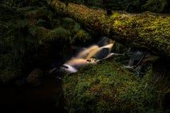 Secret Hidden Stream. Stream at Wyming Brook Nature Reserve - Peak District UK stock image