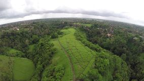 Secret hills in Bali stock video