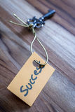 Secret key for a successful life Royalty Free Stock Photography