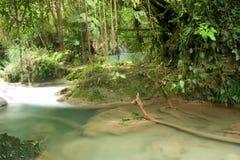 Secret pool in rainforest, Agua Azul, Mexico. Unusual colors of the jungle river, Agua Azul, Mexico stock image