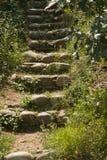 Secret Steps Royalty Free Stock Photo