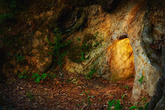 Secret stone cave in dark forest Stock Photography