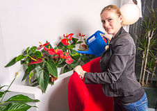 Secretary girl  is watering Royalty Free Stock Images