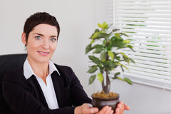Secretary holding a plant Royalty Free Stock Images
