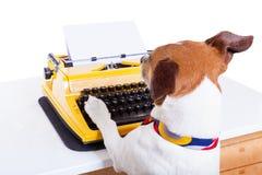 Secretary typewriter  dog Royalty Free Stock Photo