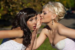 Secretive blonde and brunette Royalty Free Stock Images
