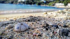 Secreto abrigúenos las Islas Vírgenes Foto de archivo libre de regalías