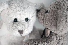 Secretos del oso del peluche Foto de archivo libre de regalías