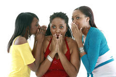 Secrets. Three friends sharing gossip stock images