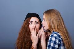 secrets heureux d'amies indiquant deux jeunes Fille Images stock