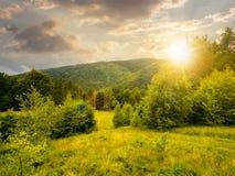 Secteur boisé en montagnes au coucher du soleil image libre de droits