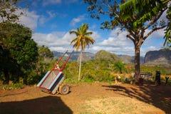 Secteur célèbre de tabac de terres cultivables du Cuba, Valley de Vinales, Cuba images libres de droits
