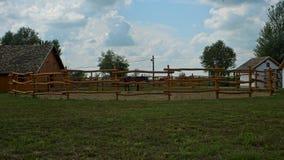 Secteur clôturé avec un cheval brun à l'intérieur de lui photos stock