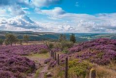 Secteur de crête de Derbyshire Images stock