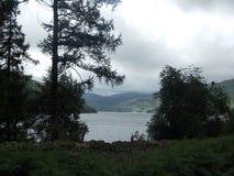 Secteur de lac Image stock