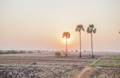 Secteur derrière des champs de Kiling, Phnom Penh, Cambodge Photo libre de droits