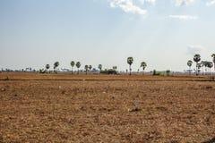 Secteur derrière des champs de Kiling, Phnom Penh, Cambodge Images libres de droits