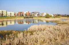 Secteur résidentiel avec un parc d'étang Photographie stock libre de droits