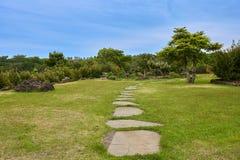 Secteur reculé avec les étapes rocheuses, l'herbe, et les arbres avec le ciel bleu en Camellia Hill d'île de Jeju, Corée du Sud photo libre de droits