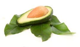 Sectie van avocado op bladeren Royalty-vrije Stock Foto
