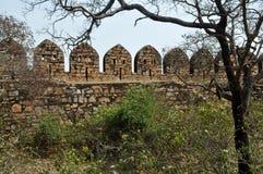 Sectie van een fortmuur Stock Fotografie