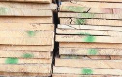 Sectie van hout Stock Foto