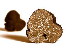 Sectie van zwarte truffel stock fotografie