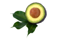 Section of avocado Stock Photos