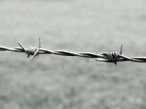 Section of barb wire Stock Photography