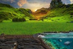 Section de sol et de mer Une pelouse verte pittoresque dans les rayons de Images stock