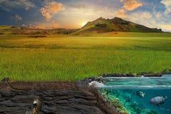 Section de sol et de mer Une pelouse verte pittoresque dans les rayons de Photos libres de droits