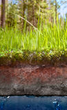 Section of earth. With grass and water Royalty Free Stock Images