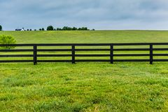 Section of Horse Fence and Pasture. In Kentucky Stock Photo