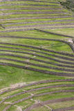 A section of the incredible ancient circles of Moray in Peru. Royalty Free Stock Image