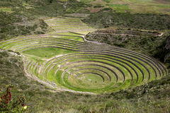 A section of the incredible ancient circles of Moray in Peru. Royalty Free Stock Images