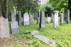 Section juive de cimetière de central de Vienne Images libres de droits